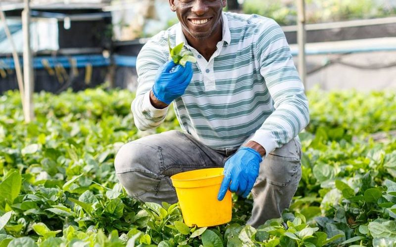 Farm Workers job in Canada